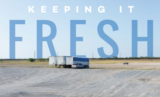 Keeping it fresh Castelo Cold Storage plans expansion to Progreso - rgVision Magazine & Keeping it fresh: Castelo Cold Storage plans expansion to Progreso ...